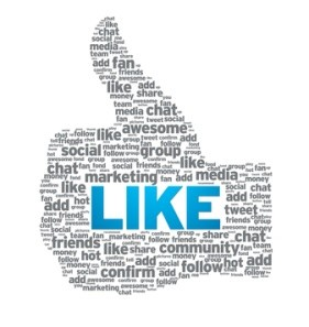 Social Media Einsatz